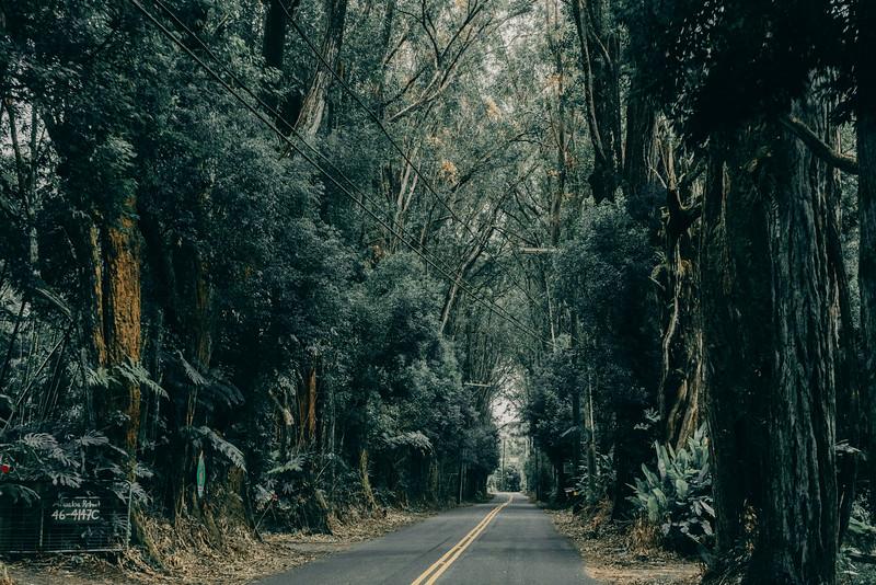 Hawaii20-416.jpg