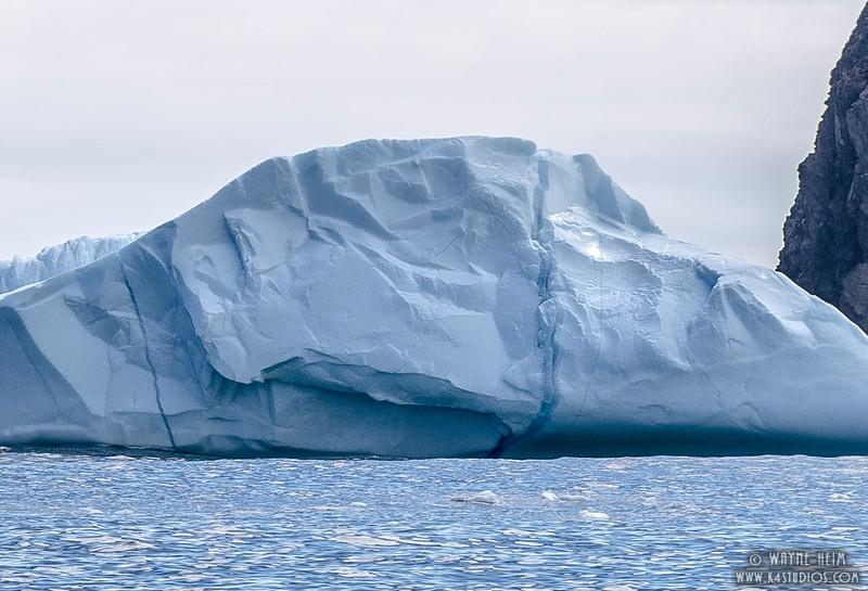 Iceberg 18 Close    Photography by Wayne Heim