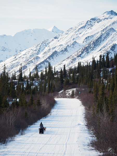 20190326_alaska_trip_alpine_creek_lodge_2341.jpg