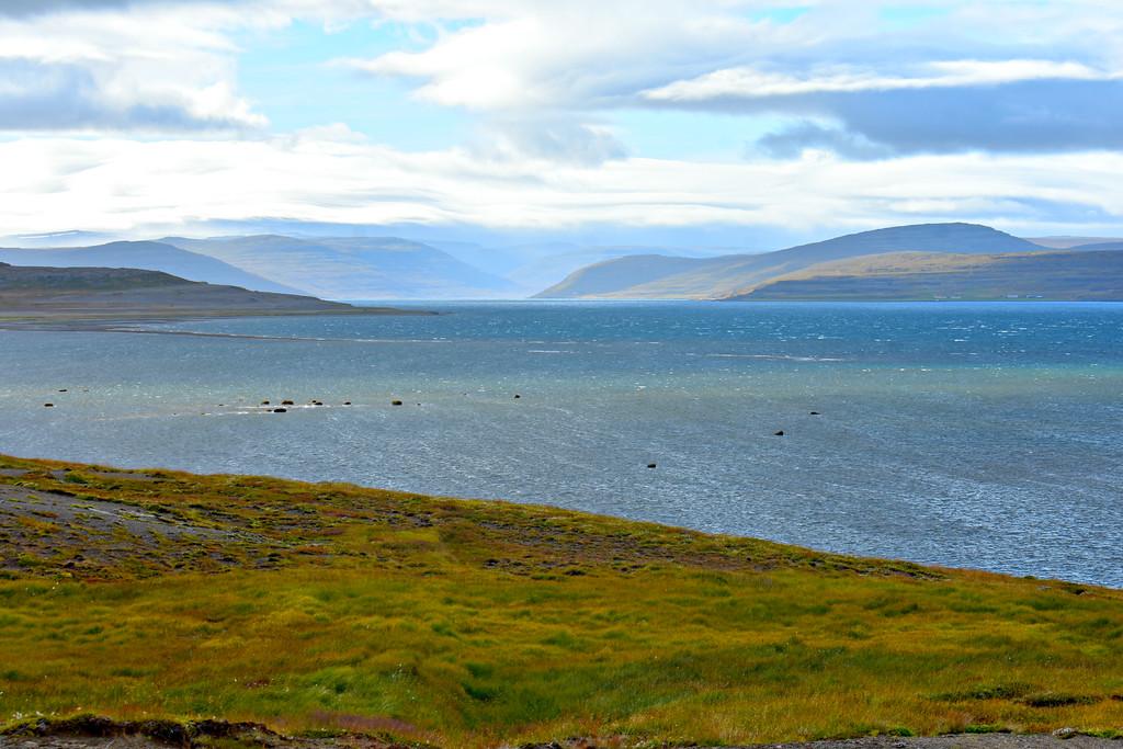 Ísafjarðardjúp West Fjords, Iceland