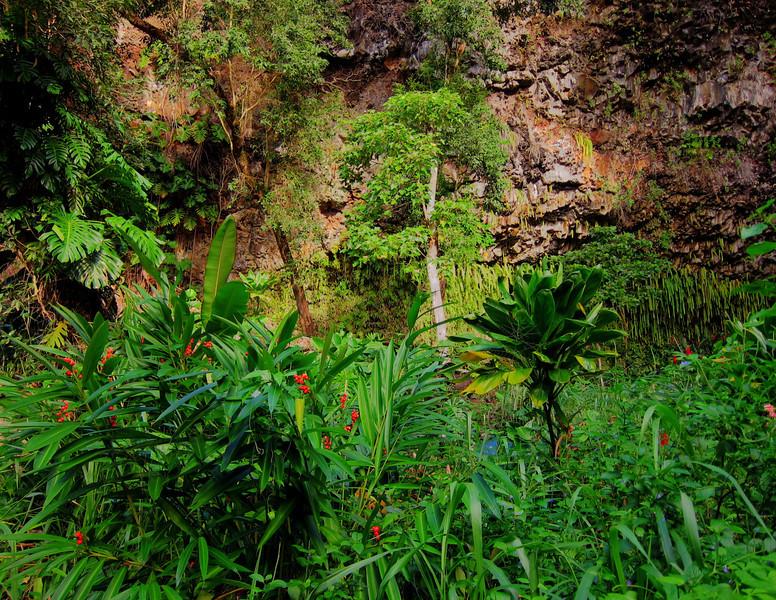 Kauai'10_S90_HDR3_155.jpg