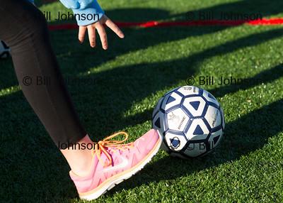MIAA G Soccer Duxbury v Sandwich 11-3-14