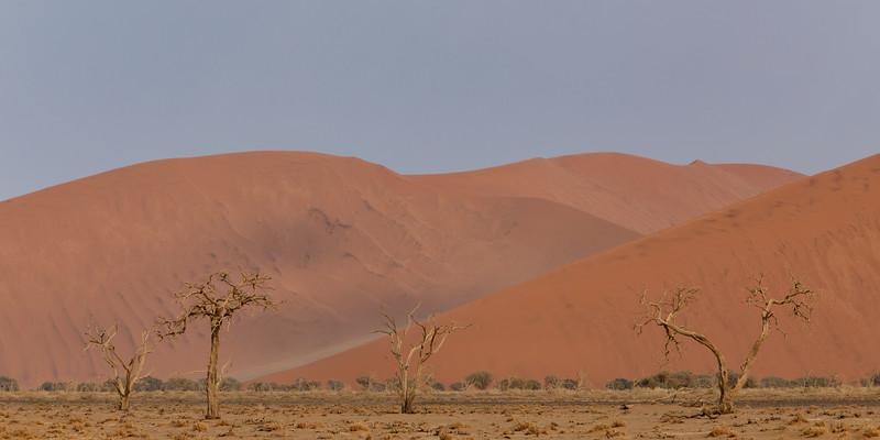 Namibia 69A4807.jpg
