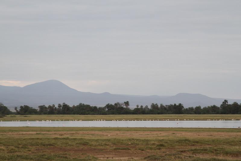 Kenya 2019 #2 1931.JPG