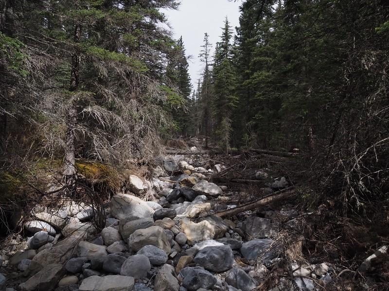 A Dried-up Jewell Creek.