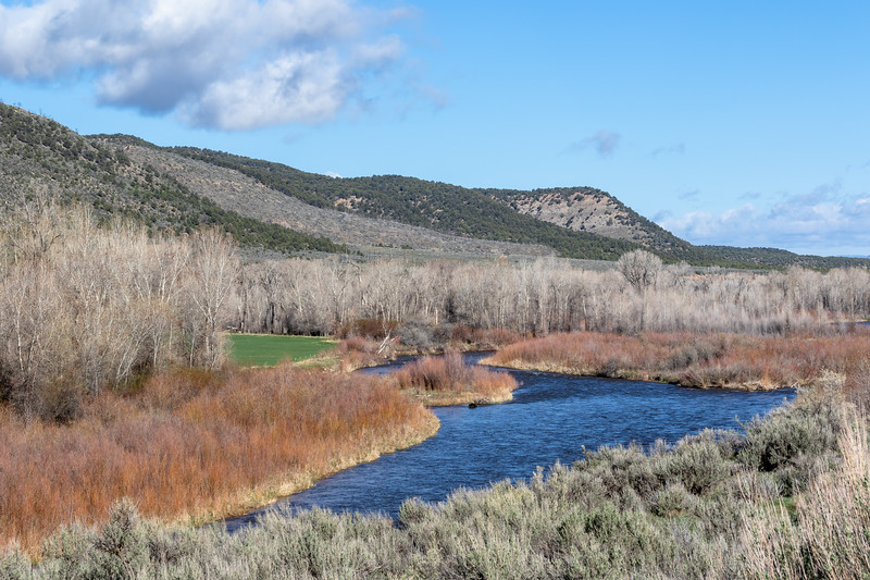 The White River in Northwest Colorado. Photo by Mitch Tobin/The Water Desk.
