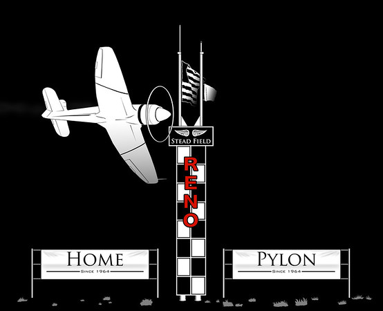 Home Pylon (Book)