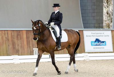 Equestrian Fashion CDI  2014