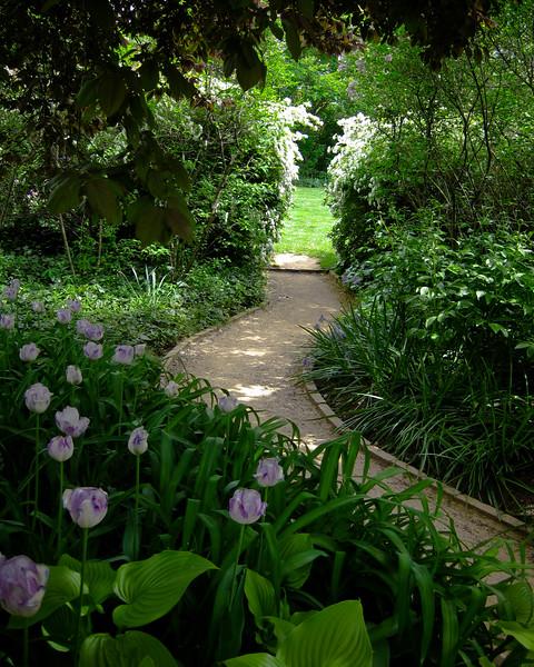 UVa Pavillion Garden