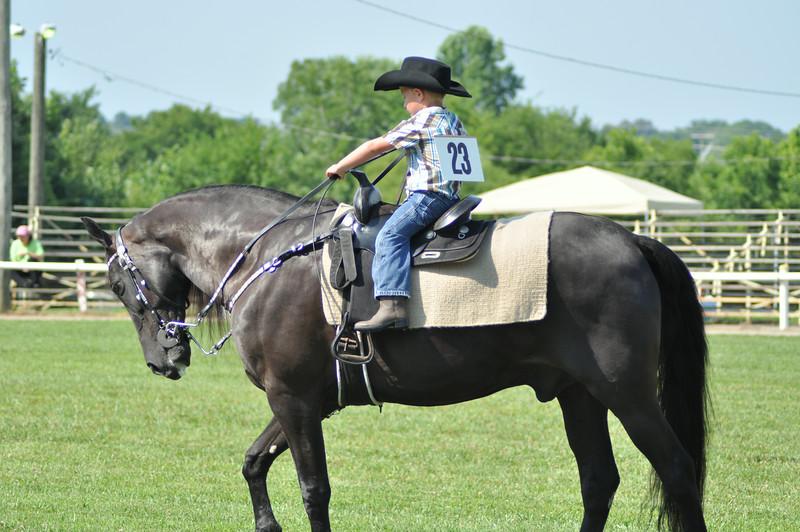 horseshow-sweetwater-0058.jpg
