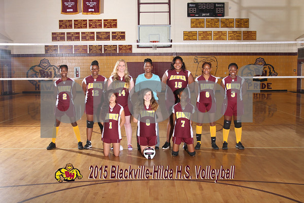 2015  Volleyball Varsity