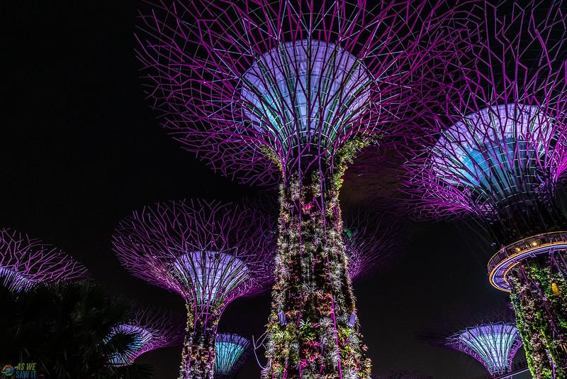 Singapore-evening-1573.jpg