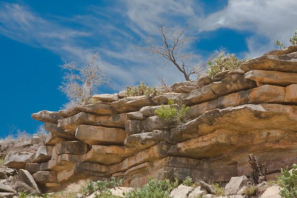 Painted Rocks (June 20)