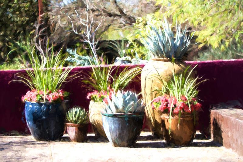 Desert Gardens.jpg