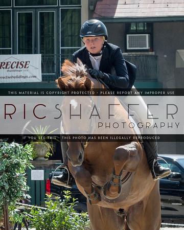 $2500 Equine Billing Low Child Adult Classic