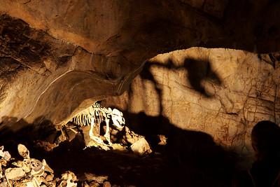 Kateřinská jeskyně a netopýři 10. 9. 2016