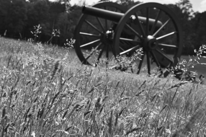 Cannon copy.jpg