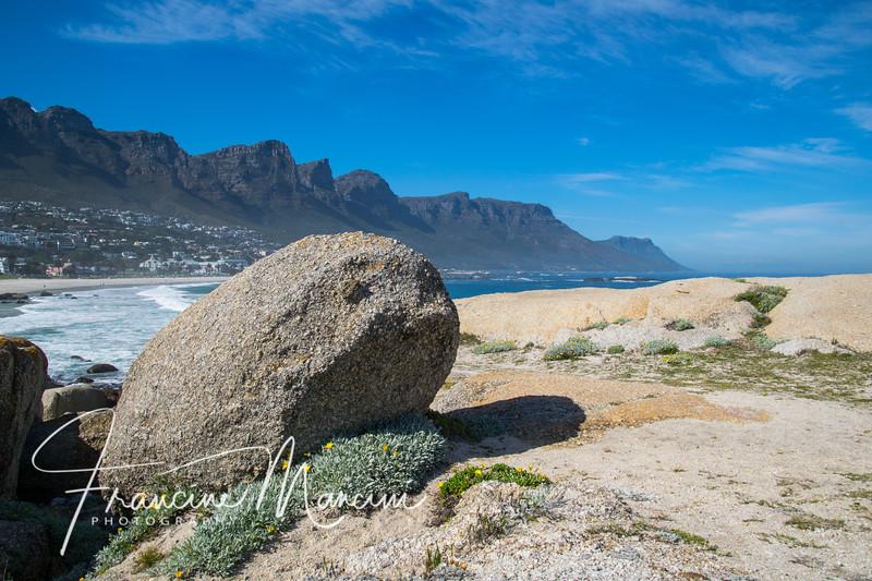 South Africa (280 of 5206).jpg