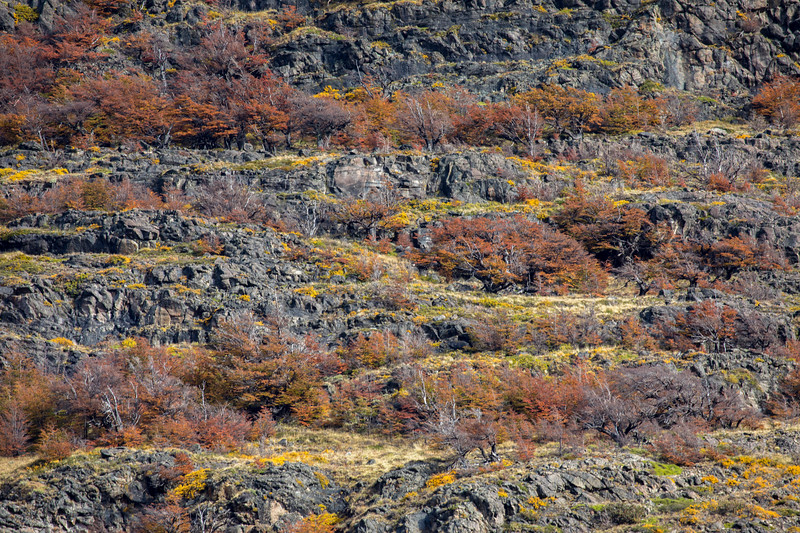 Rocky Hillside North of El Chalten-1.jpg