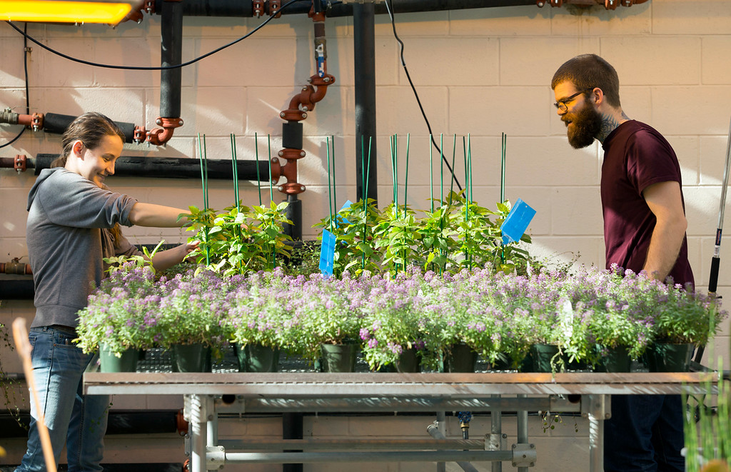. Horticulture majors Nicole Jackson and Jay McColm-photo by Betsy Manning