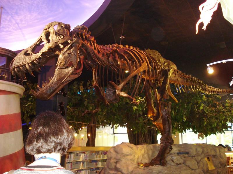 Dinosaur in Cerritos Children's Dept_.jpg
