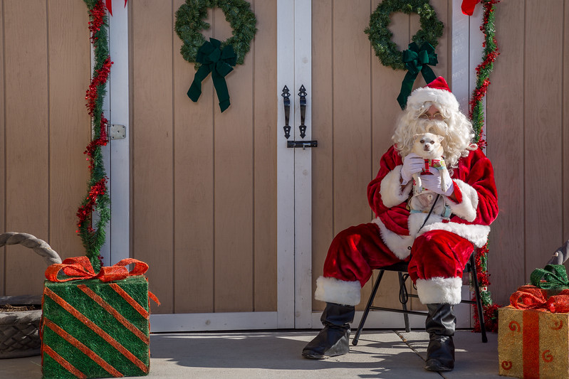 Pet Pictures With Santa-93.jpg