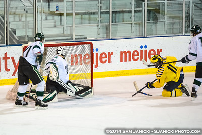 11-21-14 Michigan Men's Club Hockey Vs Michigan State