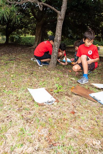 Grade 4-Negishi Park - Nature Observation-ELP_2807-2018-19.jpg