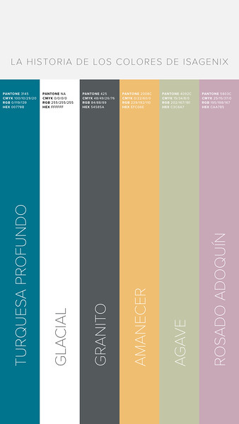 6474_es_BrandTraining_SocialShareables_Color_1080x1920_1.jpg