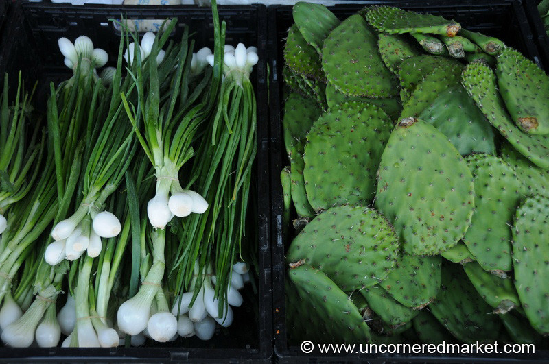 Edible Cactus and Spring Onions Jacksonville Market, Florida