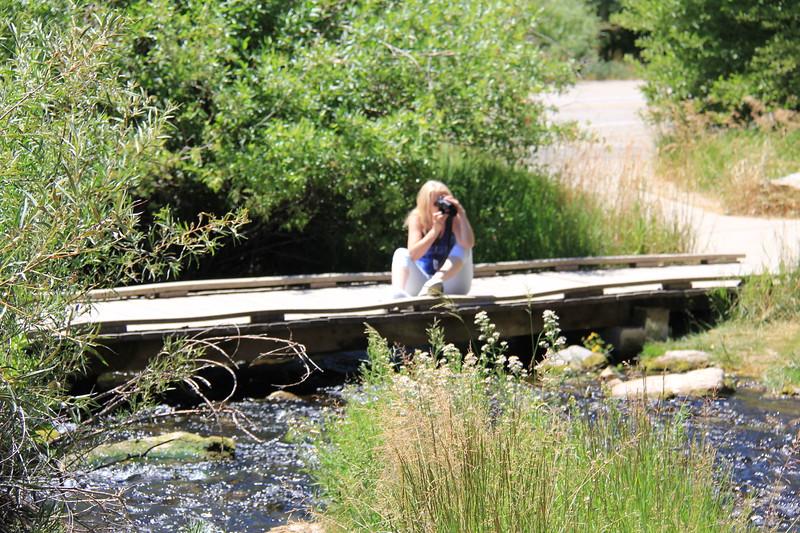 20180718-008 - Utah - Sharon at Rick's Spring Along US89 to Bear Lake.JPG