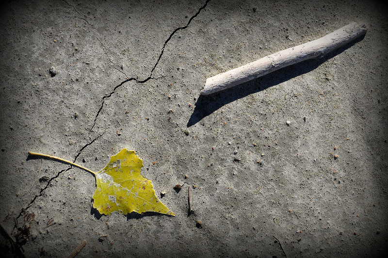fault line 10-26-2012.jpg
