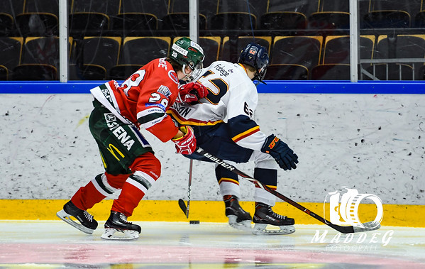 J18SM Åttondelsfinal #2 2019-03-23: Frölunda HC - Djurgårdens IF