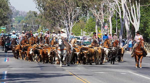 2013 Norco Horseweek Parade