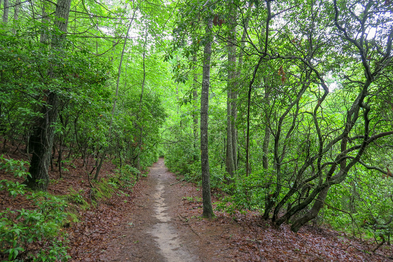 Explorer Loop Trail -- 2,390'