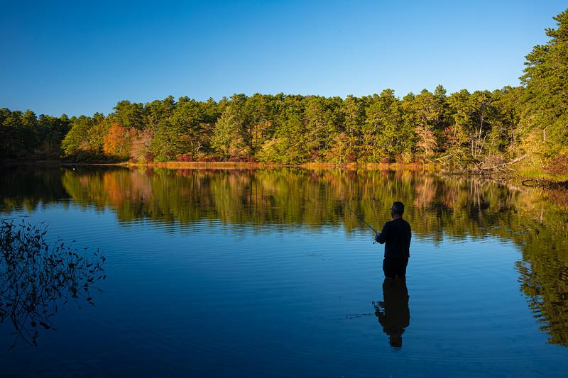fisher inSnow Pond.jpg