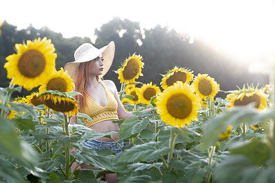 Sunflowers with Ashley