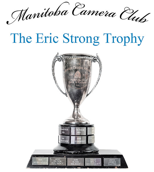 The Eric Strong Trophy 4.jpg