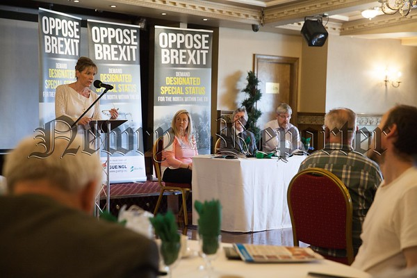 Martina Anderson MLA speaking at Bellinis Newry. R1726020