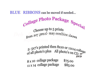 COLLAGE PHOTO PACKAGE SPECIAL