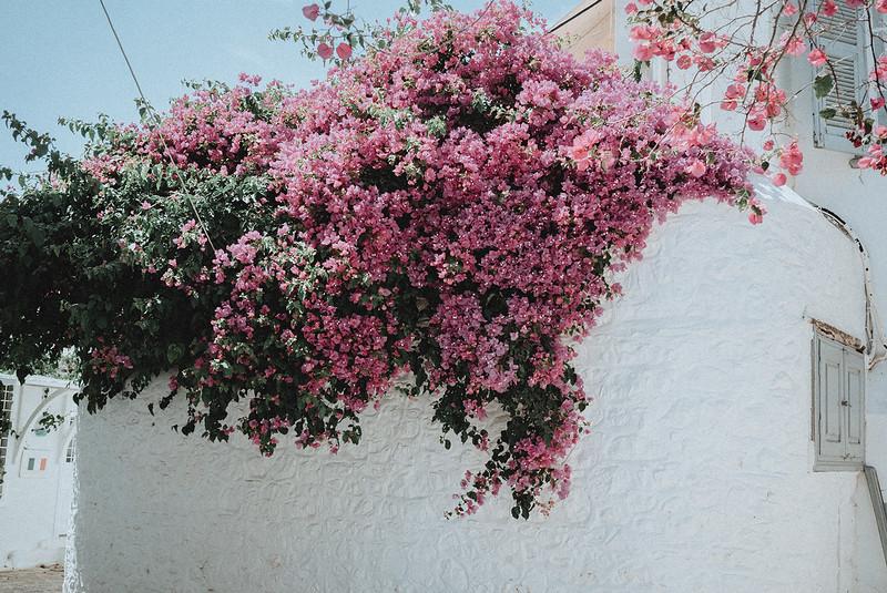 Tu-Nguyen-Wedding-Photography-Hochzeitsfotograf-Destination-Hydra-Island-Beach-Greece-Wedding-67.jpg