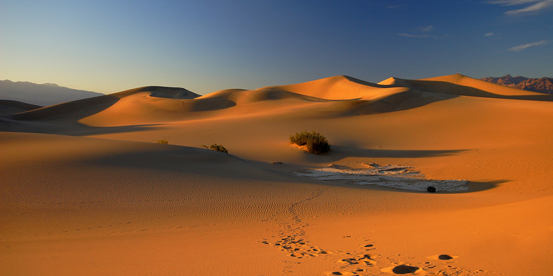 Mesquite Dunes, Evening