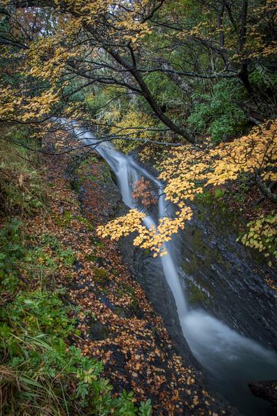 Waterfall Glacier Park-1.jpg