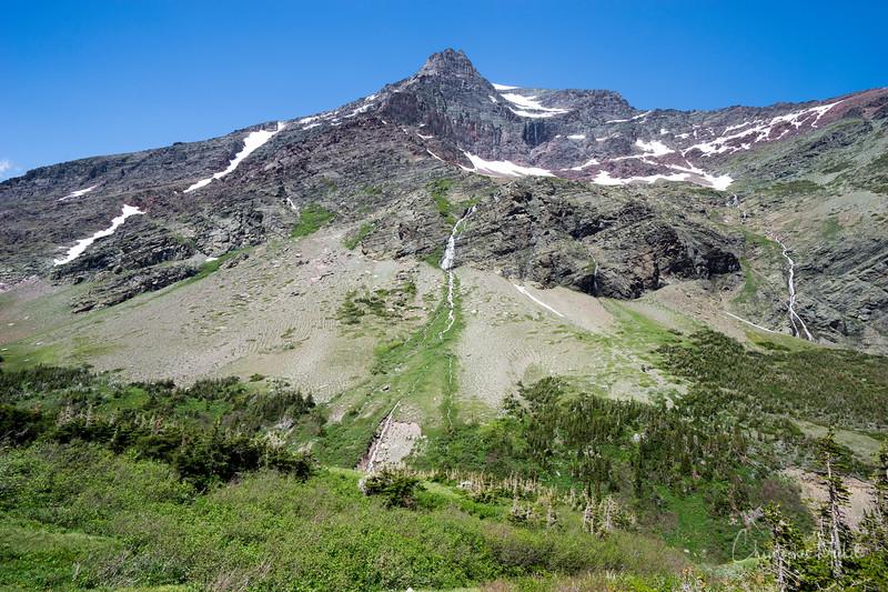 150611_CrackerLake_glacier_national_park_5645.jpg