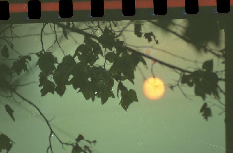 film150.jpg