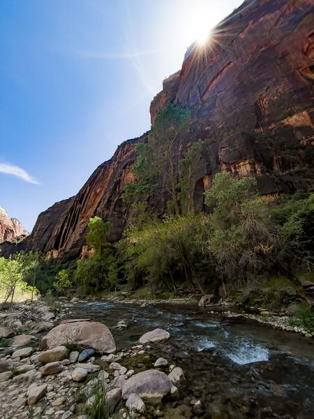 20210514-15 Zion National Park Highlights-16.jpg