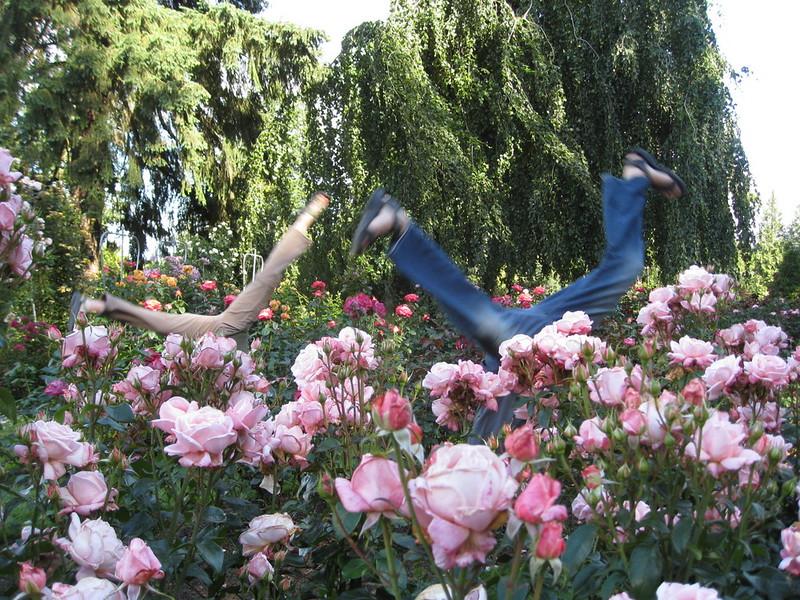 staceecalderon - rosegardensportlandor2.JPG