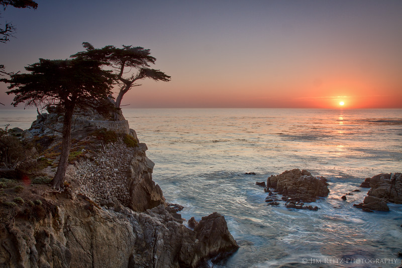 Another sunset shot with the lone cypress tree.