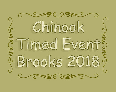 Chinook Timed Event Brooks 2018