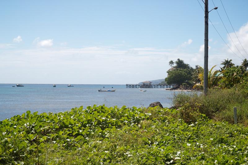 Roewe_Fiji 30.jpg